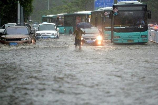 为什么很多车主宁愿爱车被淹,也不开走呢?
