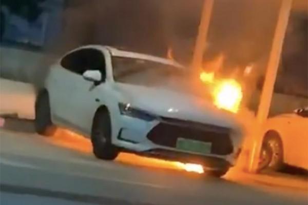 深圳一比亚迪秦Pro EV疑似发生自燃 官方暂无回