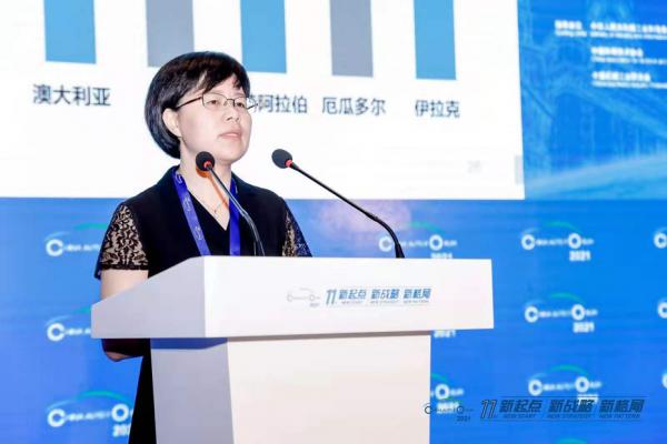 谢国平:中国皮卡市场发展趋势